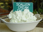 Order Scallion Cream Cheese